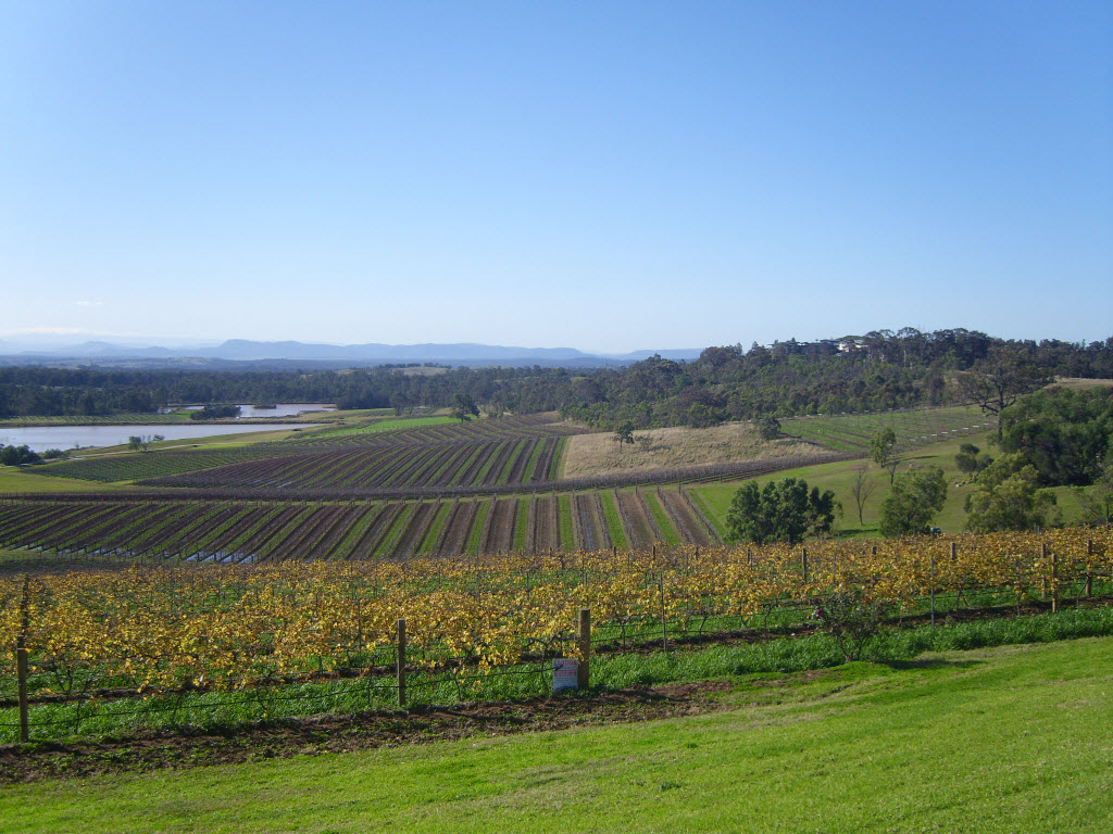 Hunter Valley - Amy McPherson
