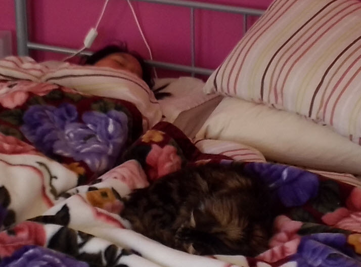 amy-in-bed-with-cat