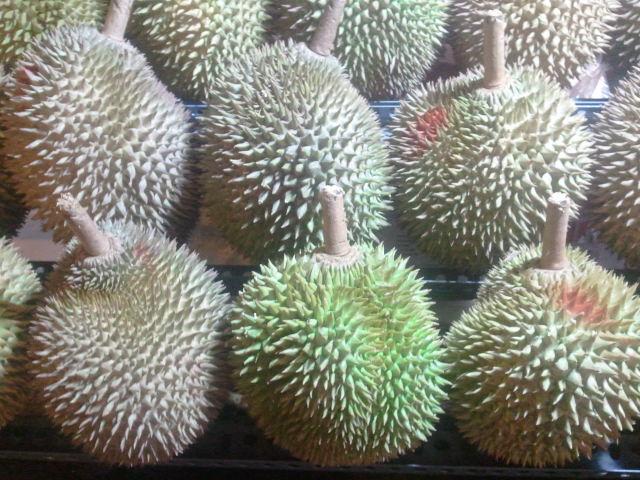 Durian - Amy McPherson