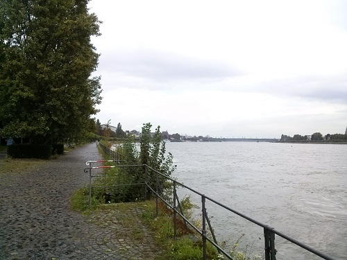 Walking path along the Rhein in Bonn - Amy McPherson