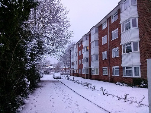 Who said winter is horrible? We had a day of proper snow, isn't it beautiful?