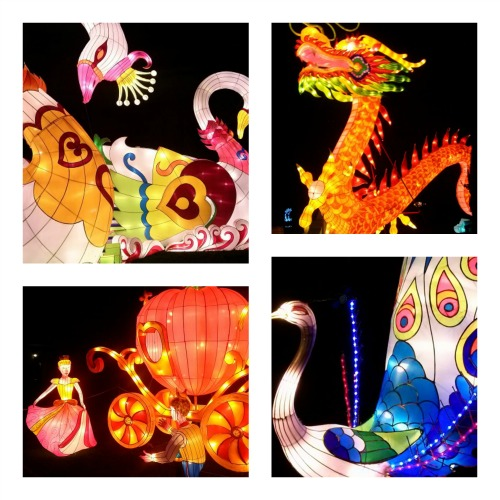 Various different styles of lanterns were on display (Images: William McPherson)